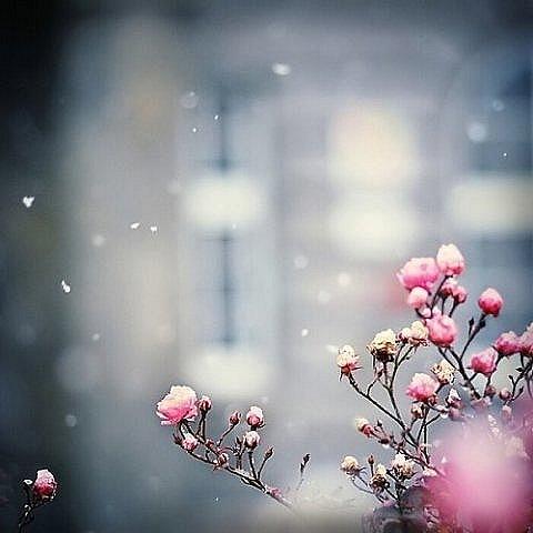 Если осень холодная то какая будет зима